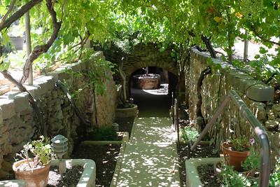 180623 UnderGround Gardens-0350