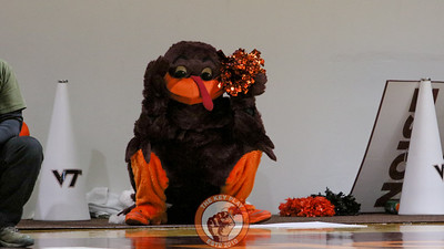 The Hokiebird can't believe what he's seeing as the dogs finish up their halftime performance. (Mark Umansky/TheKeyPlay.com)