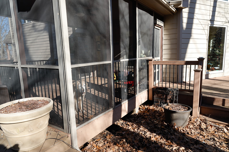 Front side covered porch. Shows side of house and view into LRoom