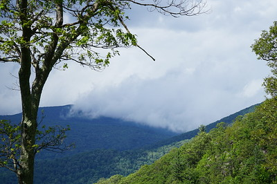 With peaks at high as 3595', the Appalachians and the cloud canopy have frequent interaction.