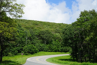 I only did the northern half of Skyline Drive, but it was still more than 5 hours of winding, rolling road through lush green forests.
