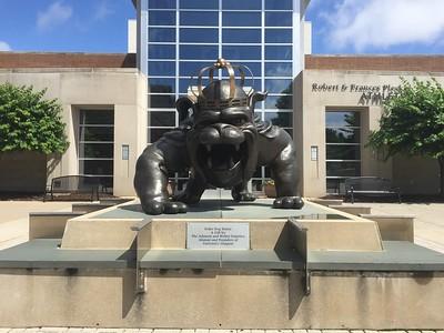 Duke Dog, the mascot of the JMU Dukes.