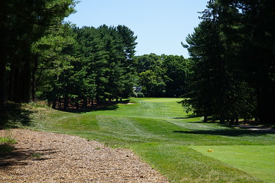 Needham Golf Club:  Hole #5, par 4, 347 yards.  A narrow lane for the tee shot, steep uphill to the green.