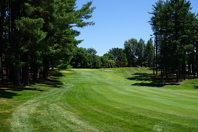 Needham Golf Club:  #5, my drive found the rough.  That branch could be factor.