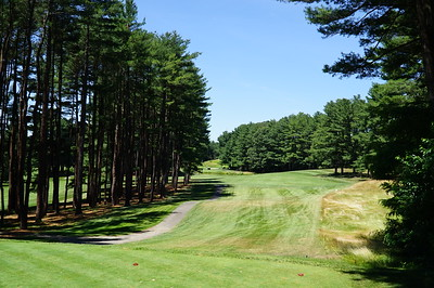 Needham Golf Club:  Hole #6, par 4, 398 yards.  Water hazard at the bottom of the hill at 240 yards.  Best to keep the Big Dog in the bag and go with the 3.