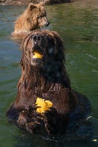 181029 Oakland Zoo-00183
