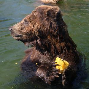 181029 Oakland Zoo-00184