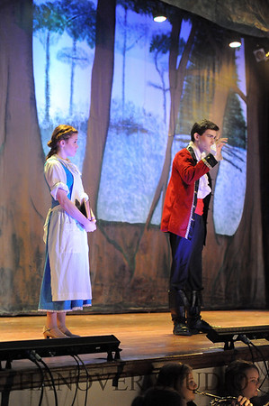 19 D BEAUTY AND THE BEAST 0324