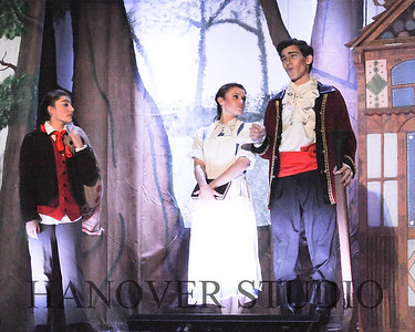 19 D BEAUTY AND THE BEAST 0169