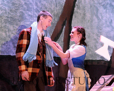 19 D BEAUTY AND THE BEAST 0225
