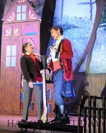 19 D BEAUTY AND THE BEAST 0141