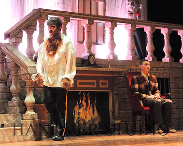 19 D BEAUTY AND THE BEAST 0295