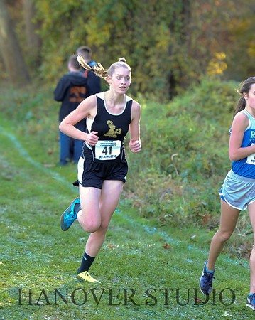 19 D CROSS CNTRY STATE FINALS  0084