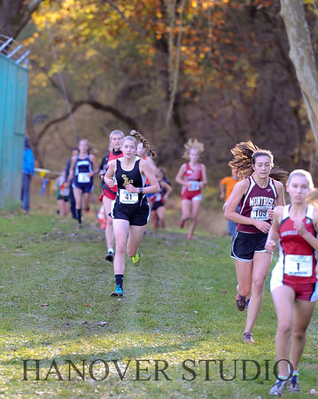 19 D CROSS CNTRY STATE FINALS  0063