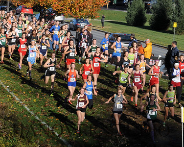 19 D CROSS CNTRY STATE FINALS  0025-2