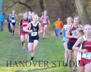 19 D CROSS CNTRY STATE FINALS  0067