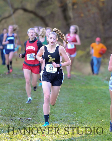 19 D CROSS CNTRY STATE FINALS  0069