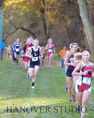 19 D CROSS CNTRY STATE FINALS  0065
