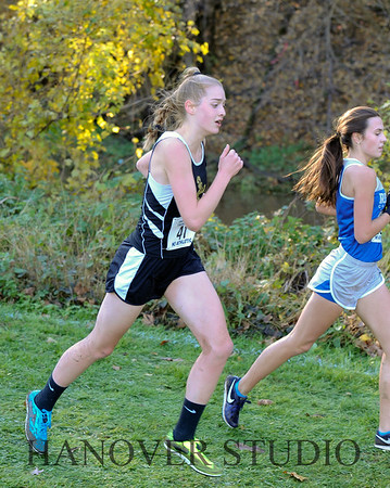 19 D CROSS CNTRY STATE FINALS  0094