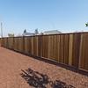 DSC_1190_sideyard