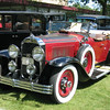 29-44 - Buicks at Buick's 100th Anniversary - Flint 2003.