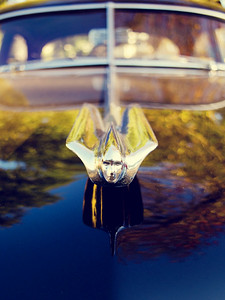 1949 Cadillac 60 Series Hood Ornament