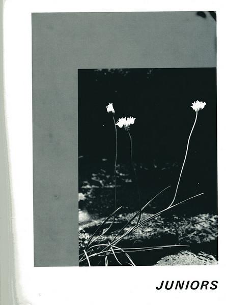 Owego - 1973--064
