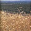 Owego - 1975--003