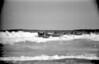 1966 POR - Point Lonsdale Boat Crew 2