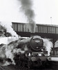 45565 Victoria, Bradford Forster Square, 24 September 1966 3   The schedule was Bradford dep 0825, Kingmoor arr 1057 dep 1200, Glasgow Central arr 1410 dep 1650, Bradford arr 2129.