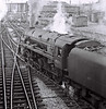 92026, Chester, 4 March 1967 3