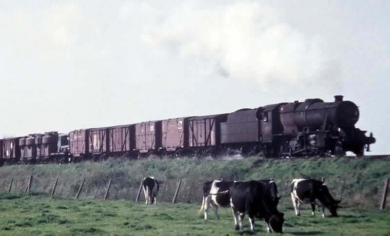 48xxx, Hest Bank, August 1967.  The 8F heads north with a fitted freight.
