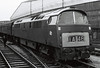 D1030 Western Musketeer, Paddington, 25 August 1966 2  D1030 was built at Crewe.  It entered traffic in December 1963, and was withdrawn in April 1976.