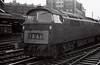D1023 Western Fusilier, Paddington, 25 August 1966   This loco has been preserved as part of the national railway collection.