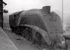 60024 Kingfisher, St Rollox shed, 16 August 1965