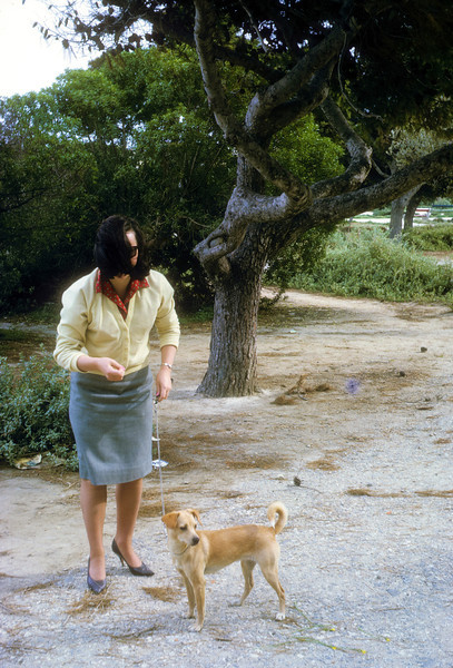 1964SlideFilm03-19640415-004