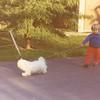 Moppy Walking Troy