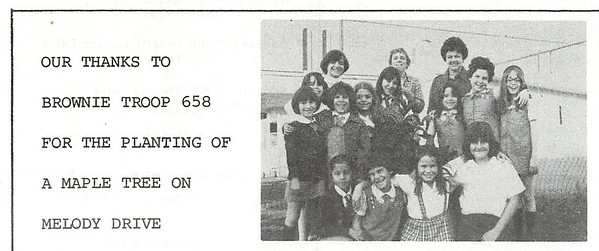1977 Bulletin Photos