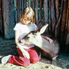 Animal Park, CA, March 1978