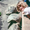 San Diego Zoo, CA, March 1978