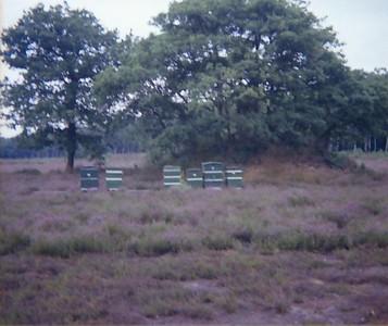 1978xxxx-Scan10011-1-Films2