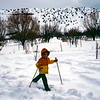Scott skiing, Capitol Reef NP, UT, February 1979