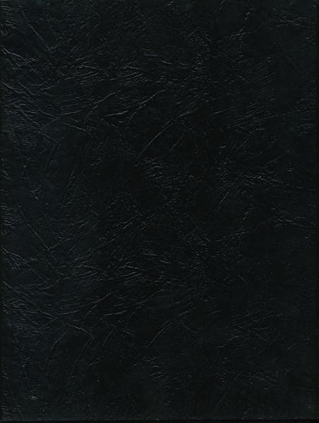 Owego - 1980-126