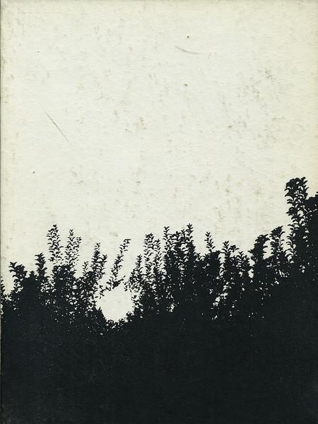 Owego - 1982-119