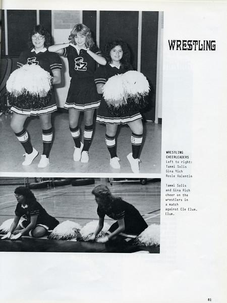 Owego - 1985-083