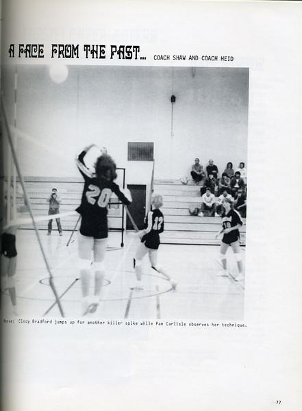 Owego - 1985-079