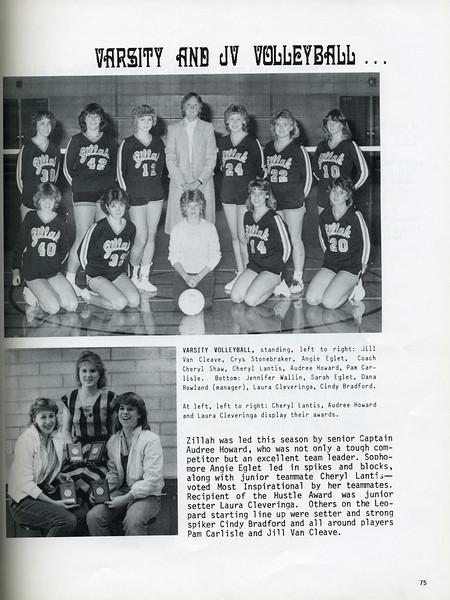 Owego - 1985-077