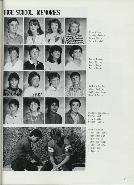Owego - 1987-065