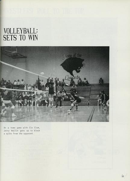 Owego - 1987-079