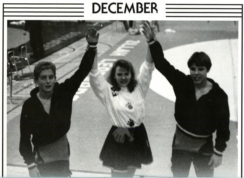 Owego 1988-037